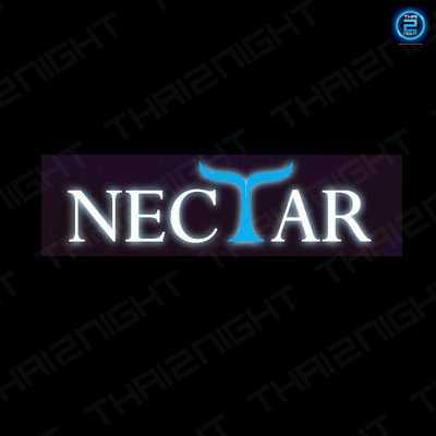 Nectar Pub : สงขลา