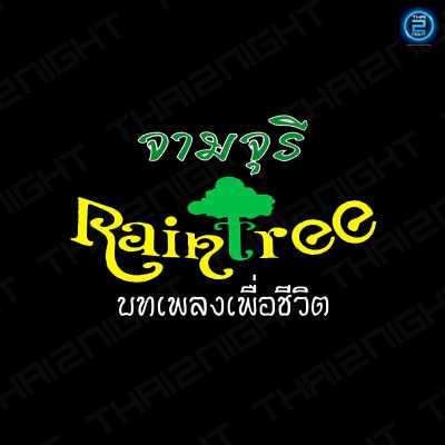 raintree จามจุรี  (ผับเพื่อชีวิต) : กรุงเทพ